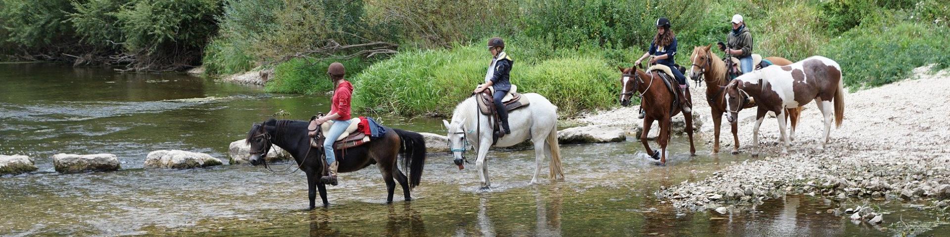 Randonnées à cheval - Bouille-Courdault en Vendée